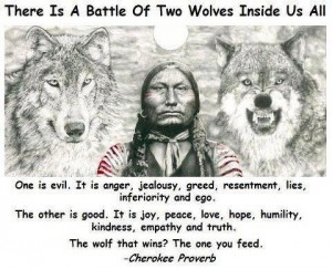Indian Wolves